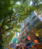 Haiphong Road