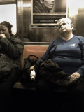 Subway Dog