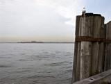 Sunrise, New York Harbor
