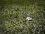 Abandoned Broom