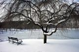 Inwood Park