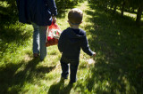 Walking the orchard in Fishkill.