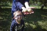 Proud apple picker!