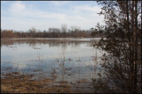 0651 Pond.jpg