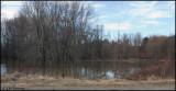 0655 Pond.jpg