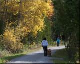 3160 Walk in the park.jpg