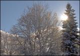 0757 Snow and Ice.jpg