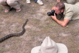 Python photography R0014216