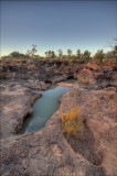 Waterholes near sunset  _DSC1986-88