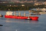 Navios Mercator