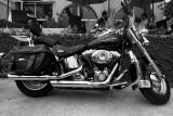 Harley4.jpg