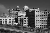 buildingsfinal.jpg