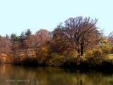 Cherokee Lake.