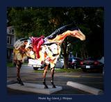 A Gallapalooza Horse