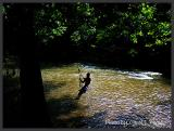 Old River Swing