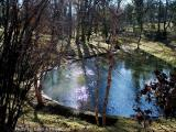 Teardrop Pond.