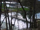 Bruceton Mills, WVA  Farm and Lake.JPG