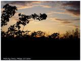 Sunset May 1 2006.