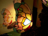 Butterfly Lamps at Crackle Barrel.
