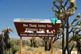 Headed to Nipton, Joshua Tree Wilderness Area