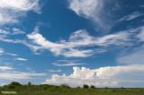 Blue sky in Rangiroa