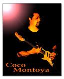 Coco Montoya 08