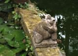 Wija's Frog Sculpture