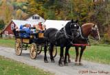 Grandpa's Rides