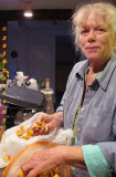 Lee sorting chanterelles. 0235.jpg
