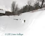Driveway Snow