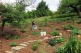 Mina and Garden
