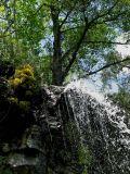 Kaledonia waterfall