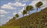 Jupiter Beach Florida