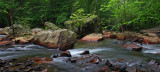 West Virginia Scenic Streams