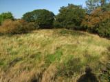 Hyssington  Castle ; the bailey