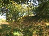 Hyssington  Castle ; the  motte