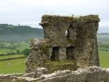 Castell  Dryslwyn / 2