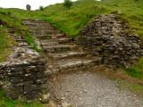 Castell  Dryslwyn / 1