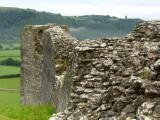 Castell  Dryslwyn / 3