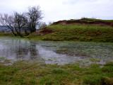 Culmington  Castle / 2