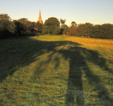 Chiddingly  spire  bathed  in   morning  sunlight.