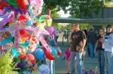 2008 Tehama County Fair Picture Entries