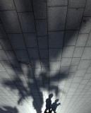 extraños en el paraiso