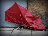 paraguas rojo malherido