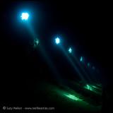 Ghannis D portholes