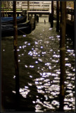 Venice Views 2008