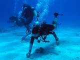 Mike training, Buoyancy control, Sharm 2005