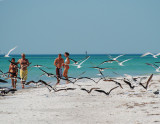 Coquina & Beer Can Beaches & Cortez Fish Village