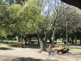 in the Palermo neighborhood, at the Parque las Heras
