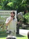 introducing the raptors